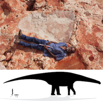World's Largest Dinosaur Footprint Found!
