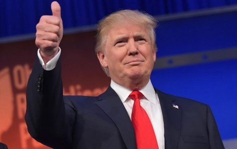 Why Should Donald Trump be President?