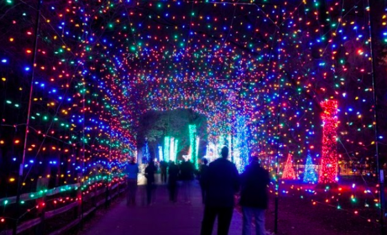 What to Do in Memphis for the Holidays!